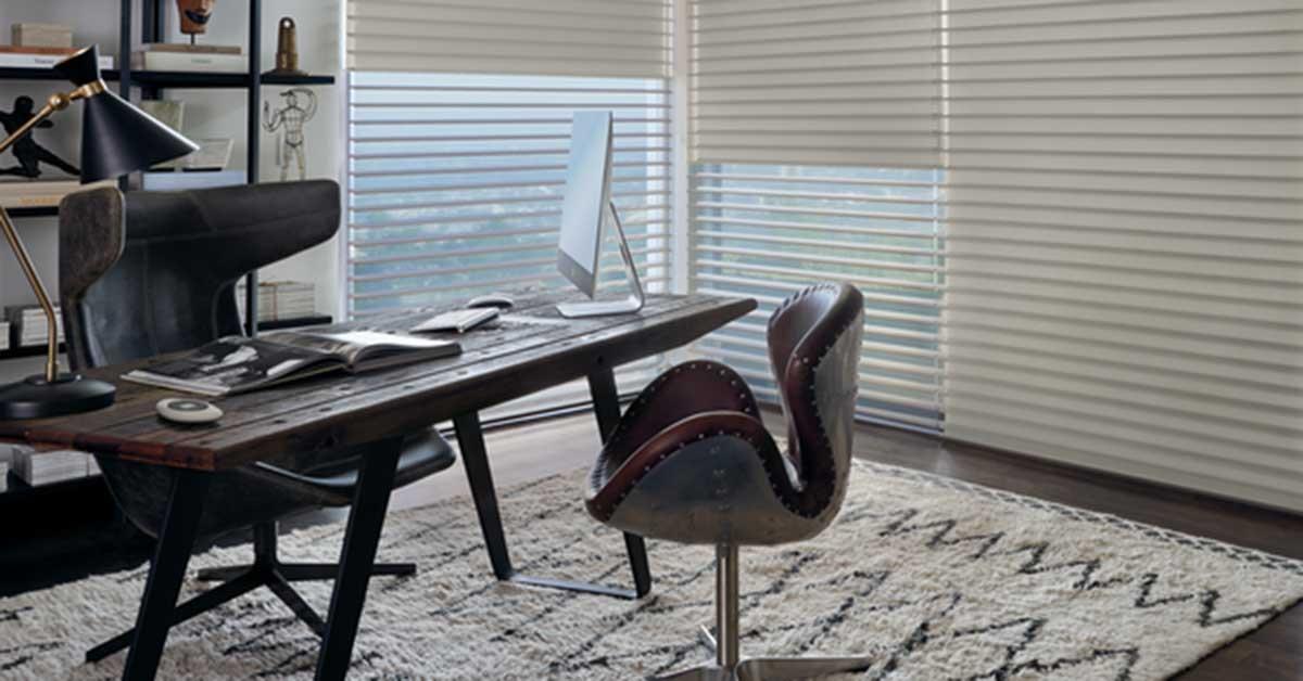 Office Space with Hunter Douglas Duolite Illustration